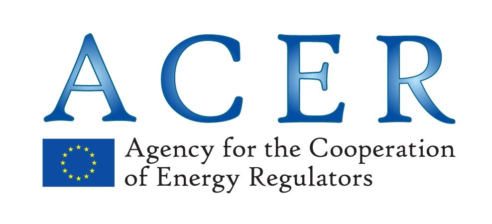 Das Logo der Acer