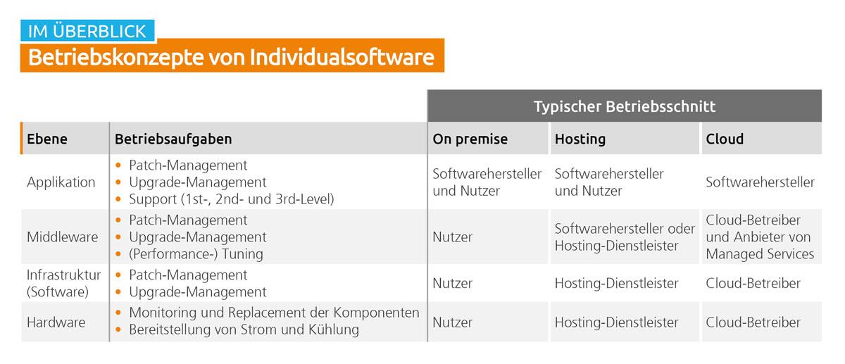 Betriebskonzepte von Individualsoftware im Überblick